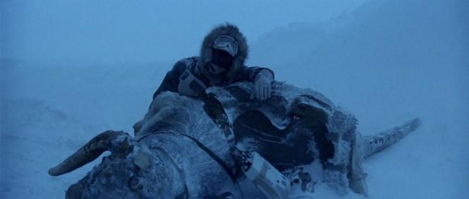 Han Solo tauntaun
